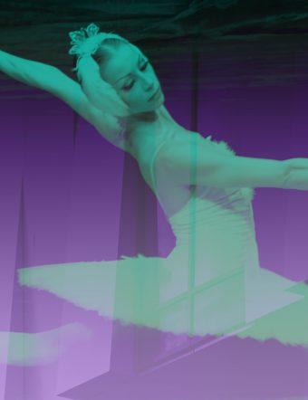 St Petersburg Festival Ballet - Svansjön