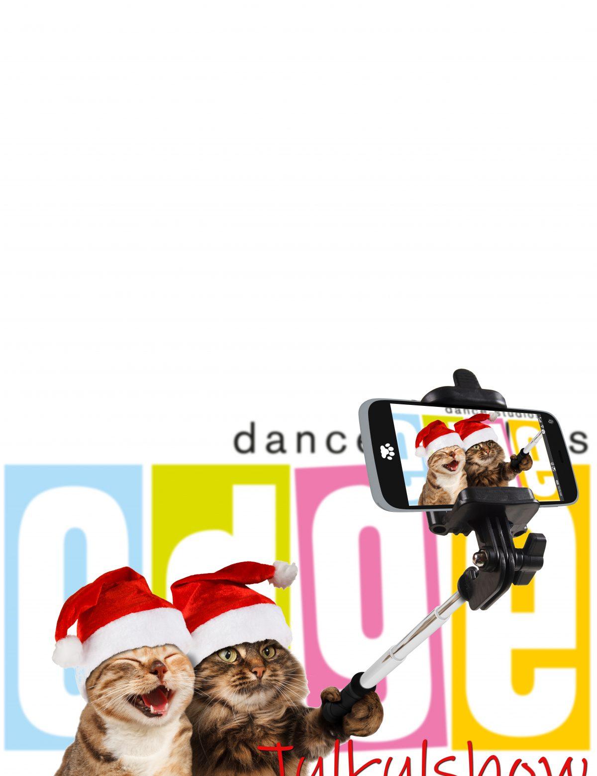 Edge Dance Studios - Julkulshow