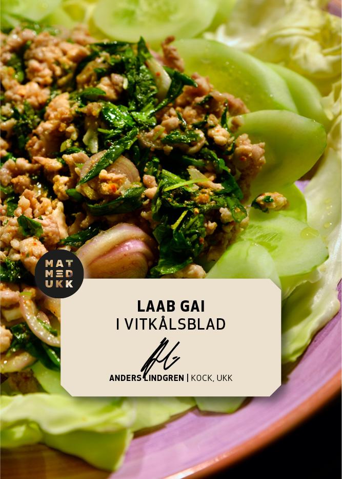 Laab Gai Recept